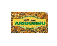 ariburnu2